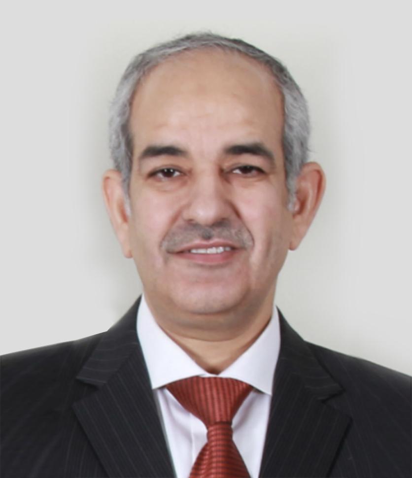 Mr. Ali Arab